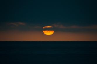 seals-sunset-8