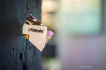 AA-Stock-Polaroid-12